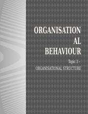 Topic 3 - Organisational Structure (email)