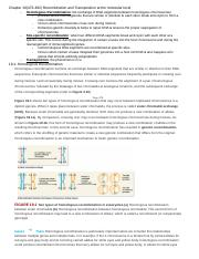 Chapter 19: Recombination and Transposition at the molecular level.docx
