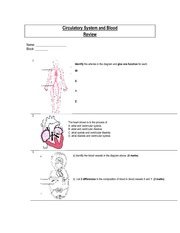Circulatory System and Blood Review
