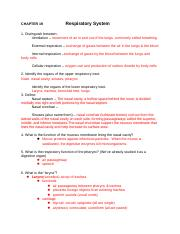 CH. 19 Study Guide.doc