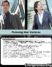 L2-Pursuing New Ventures-BA-311