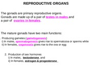 Lecture 2- Male Reproduction -Jan 13 2015
