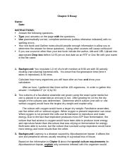Chapter 6-Essay Questions.docx