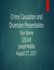 Crime_Causation_and_Diversion_Presentation.pptx