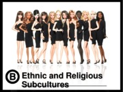 21b Ethnic and Religious Subcultures.ppt