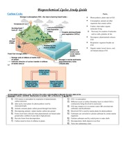 Biogeochemical Cycles Study Guide