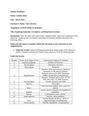 SCIE207_Lab4_PT1_worksheet_REV1