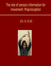 Lecture+06+-+Sensory+information+proprioception.ppt
