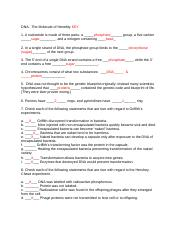 BSC 2010C Module 11 Worksheet DNA KEY - DNA The Molecule of Heredity ...