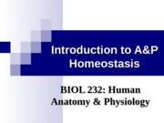 Introduction to A&P-Homeostasis