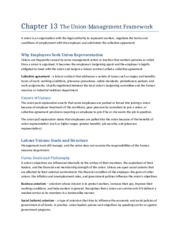 Chapter 13 The Union-Management Framework