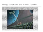 Proteins Databases(2)