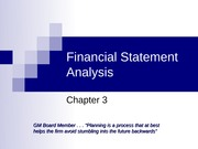 FIN 3414 Chapter 3