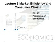 Lecture_3_Market Efficiency and Consumer_Choice[1]