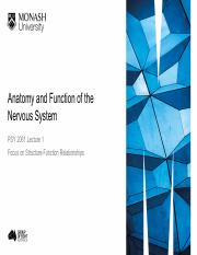 Lecture Week 1 - Anatomy and Function of the Nervous System
