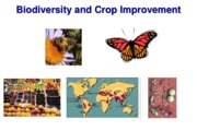 Lecture 15.+Biodiversity+and+Crop+Improvement+and+Green+revolution