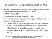 3161 Government Compliance Audits  2013 rev.ppt