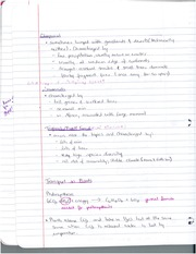 Transport in Plants Study Guide