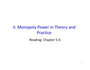 II_Monoply Power in Theory and Practice