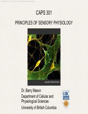 4-CAPS 301 Fall 2014 Sensory and Spinal Reflexes Mason.pdf
