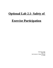 optional lab 2.1