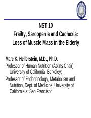 11_15_17Frailty Sarcopenia, Cachexia and Muscle in the Elderly 1116.pdf