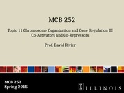 MCB 252 Topic 11 Chromosome Organization and Gene Regulation III Sp15