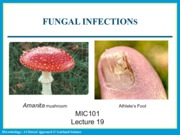 MIC101 Fungal Infections LEcture 19