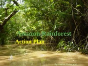 Power point for Amazon rainforest 11