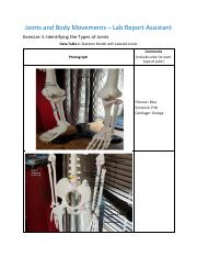 Joints and Body Movements_RPT.updated1-30-18 (1).pdf
