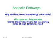 Lecture 26 Glycogen Synthesis-BW