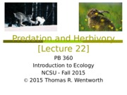 Lecture 22 - Predation and Herbivory