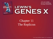 Lec 2 Chapter+11+the+replicon-2011-b1