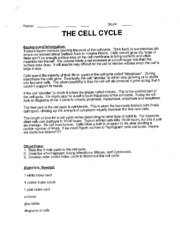 The_Cell_Cycle