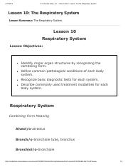 Lesson 10 - The Respiratory System