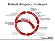 Class 03 - Robust Adaptive Strategies (RAS)