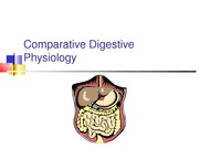 1 Comparative Digestive Physiology