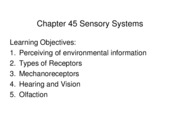 Chapter 45 Sensory Systems 2011