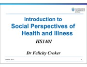 Social perspectives_2013  Presentation (1 slide pp)(1)(1)