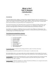 _SAP+FI+Module+Article
