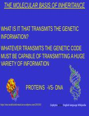 Chapter 9 DNA.ppt