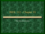 b112_Lecture_33a