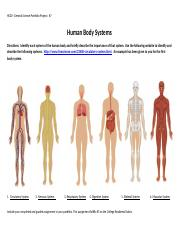 Human Body Systems_Worksheet (1)