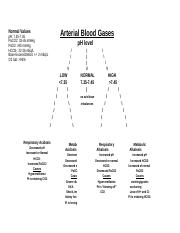 Arterial Blood Gas Flow Chart.docx