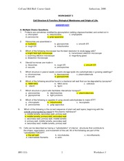 AnswerKey-BIO311c-Worksheet3-2006-Cells