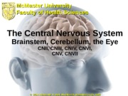 10 - CNS3 Brainstem, Cerebellum & Eye (Conestoga)