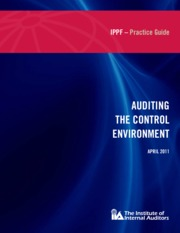 998017_1090.dl_PG Auditing Control Environment