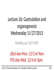 Lecture+26+Gastrulation+and+organogenesis+2013+student.pptx