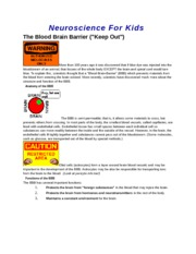 Blood Brain Barrier notes