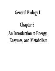 Chapter 6 Metabolism